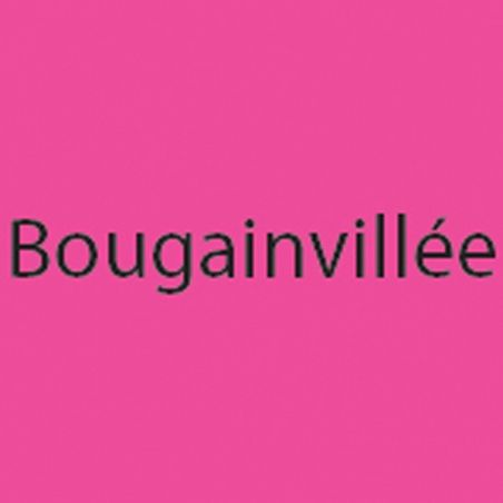 Double Page Bougainvillée