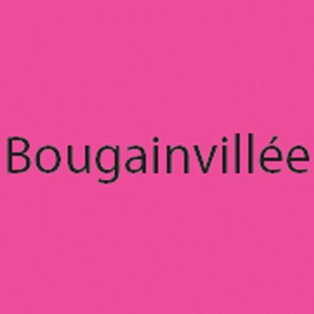 Page Verticale Bougainvillée
