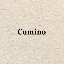 Page Verticale Cumino