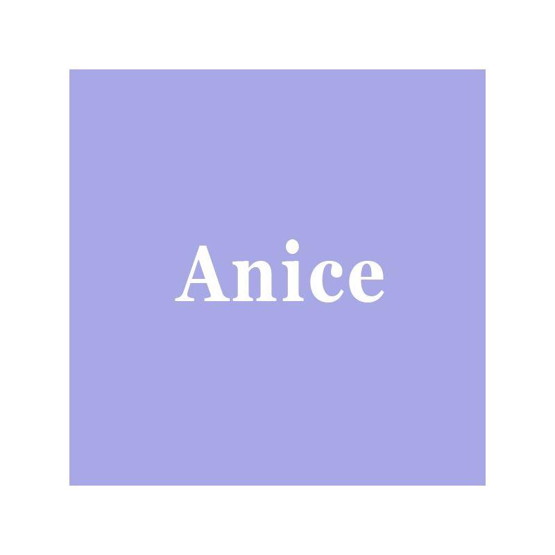 Page Simple Anice
