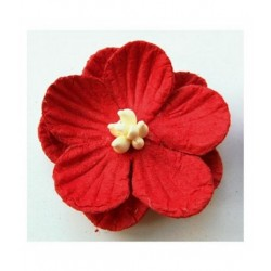 Fleurs Rouges Marianne...
