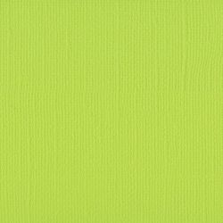 Papier Florence Lime 30,5 x...