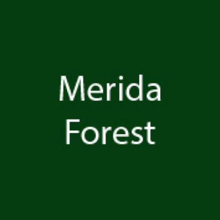 Double Page Merida Forest