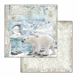 Kit Papiers Stamperia Arctic Antarctic
